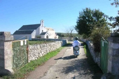 Vespa tour Charjming tours Alberobello 06